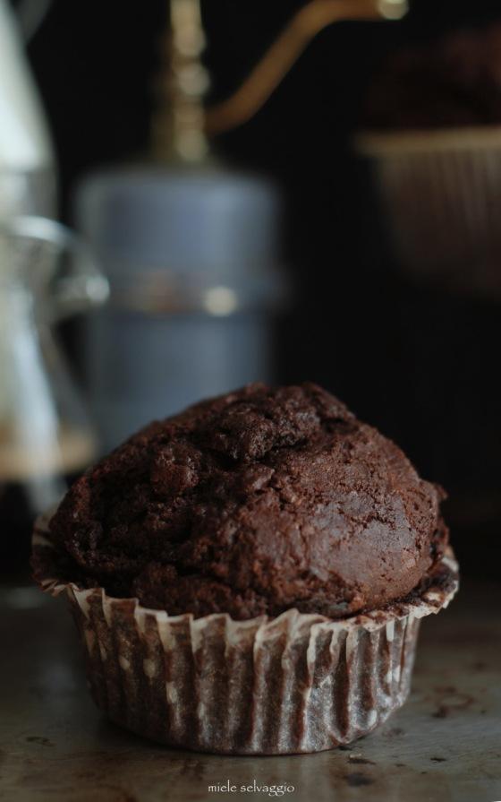 doubloe chocolate muffins 5